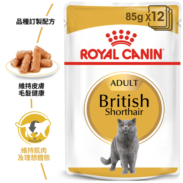 9003579001257皇家(貓)英國短毛貓專用濕糧BS34W 85G