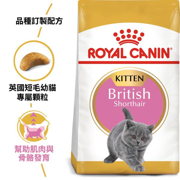 【法國皇家 ROYAL CANIN】BSK38英國短毛幼貓2KG