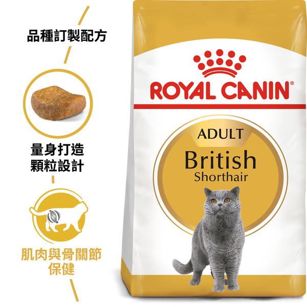 【法國皇家 ROYAL CANIN】BS34英國短毛成貓2KG