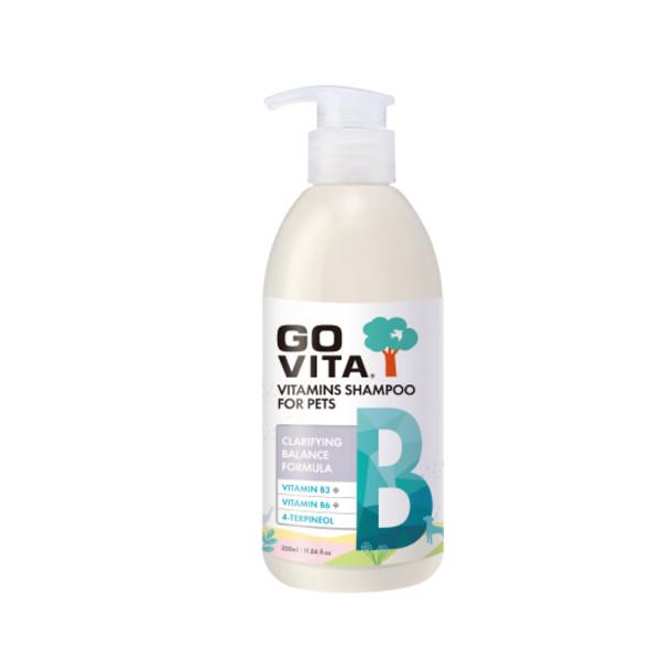 GOVITA樂維他B抗菌控油配方350ML 4712364307744