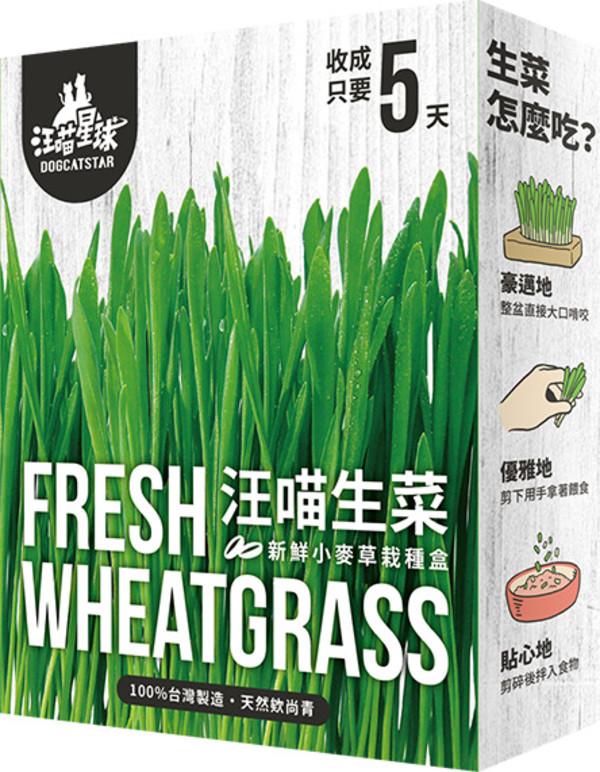 4710345540142汪喵-新鮮生菜栽培盒