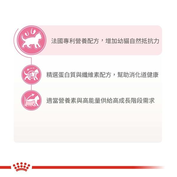 3182550702423皇家(貓)K36幼母貓2KG