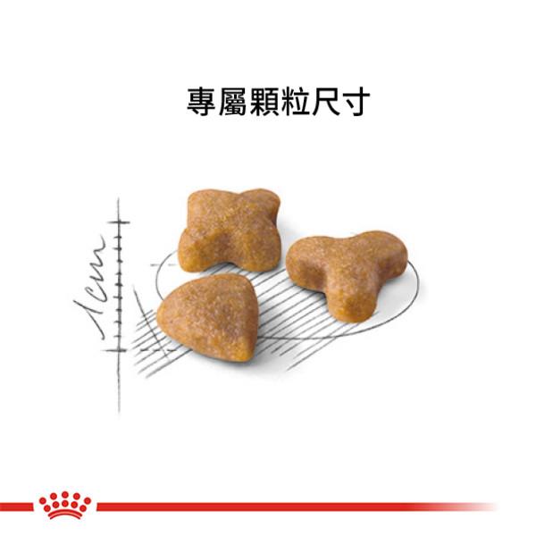 3182550702317皇家(貓)S33腸胃敏感貓2KG