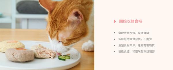 4713095470028好味調味料奶焗魚120g