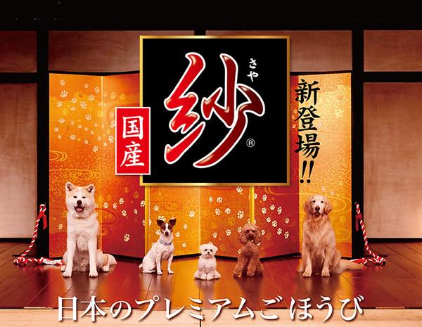 DM(犬)紗餐盒