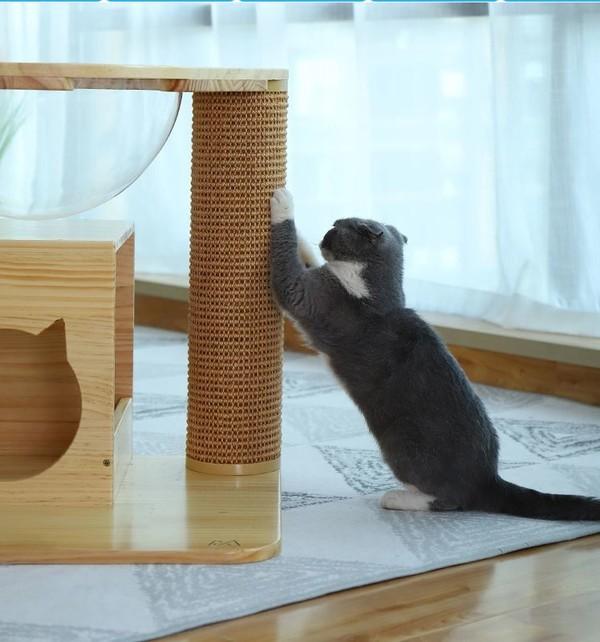 (E)喵仙兒-愛玩耍太空窩貓跳台60*50*54*36cm