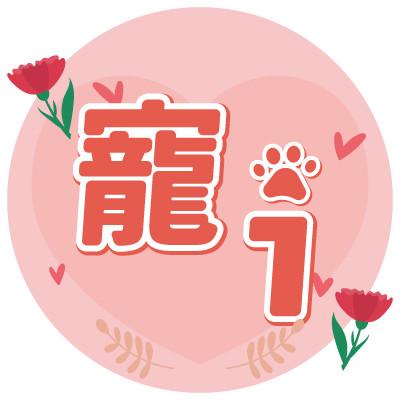 母親節icon
